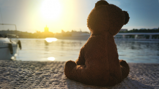 lonely teddy